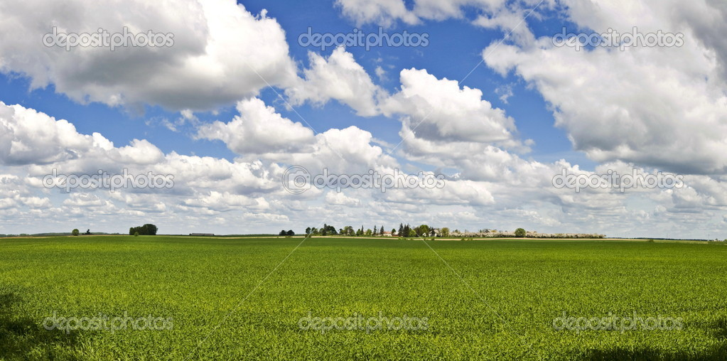 Lithuania landscape panorama
