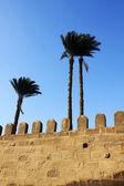 Photo Mohamed Ali Mosque, Egypt