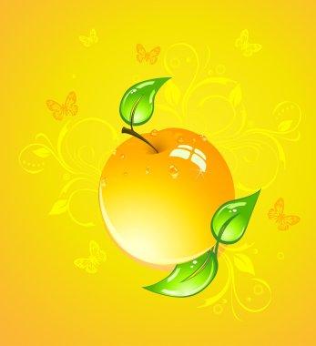 Yellow apple, vector illustration