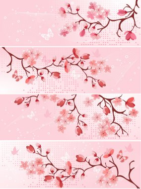 Cherry blossom, banner. Vector illustration stock vector