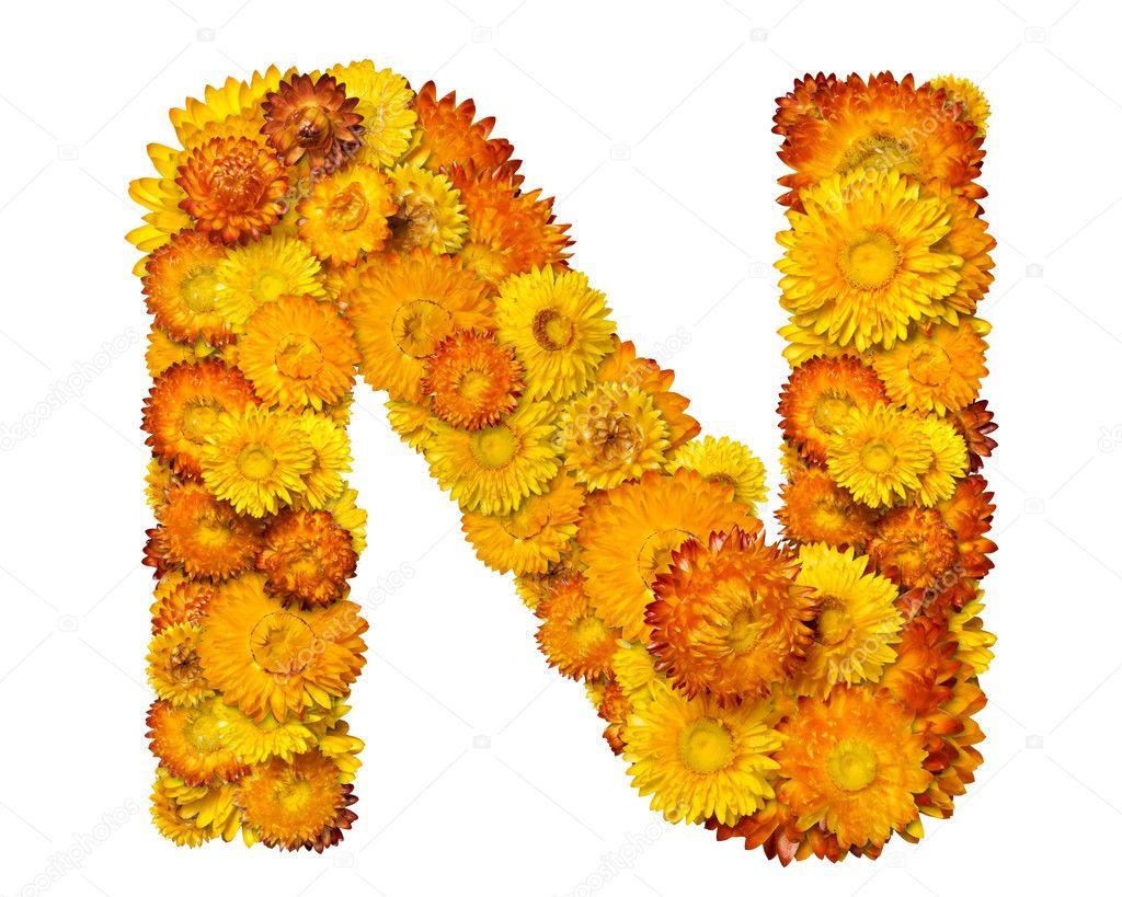 Extremamente alfabeto de flores amarelas e laranja — Stock Photo © kirs-ua #1626699 WW78