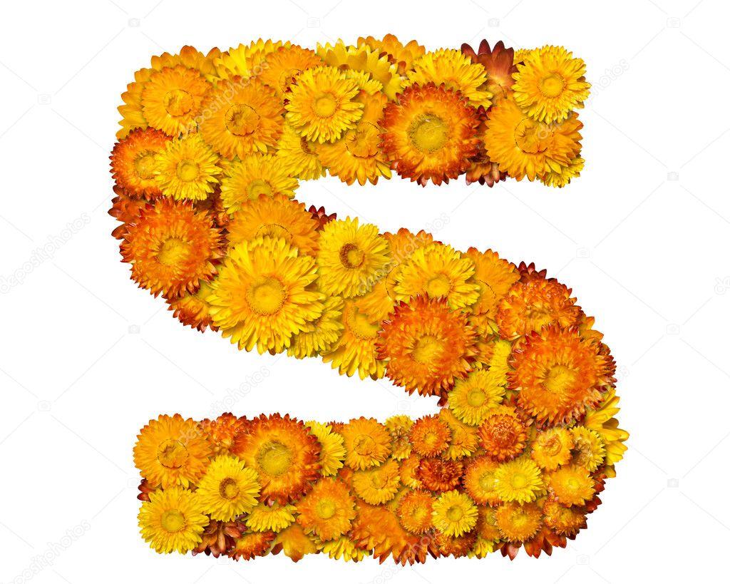 Extremamente letras do alfabeto de flores — Fotografias de Stock © kirs-ua #1627131 GR07