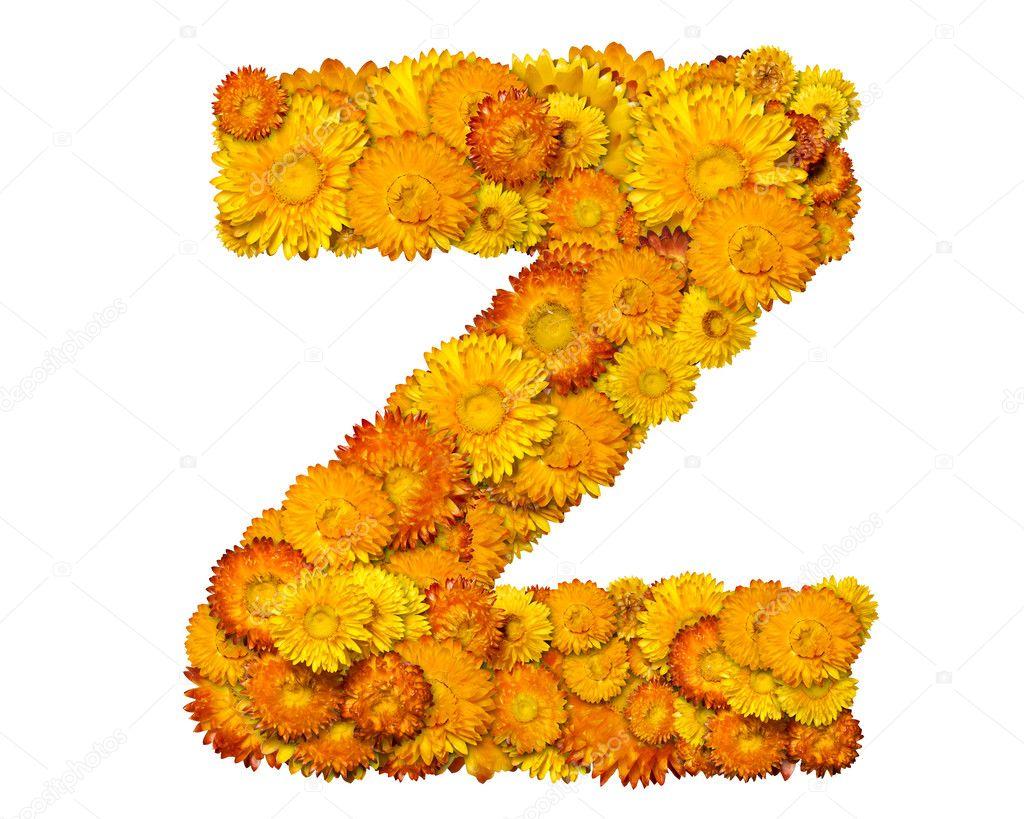 Excepcional letras do alfabeto de flores — Fotografias de Stock © kirs-ua #1632704 KD76