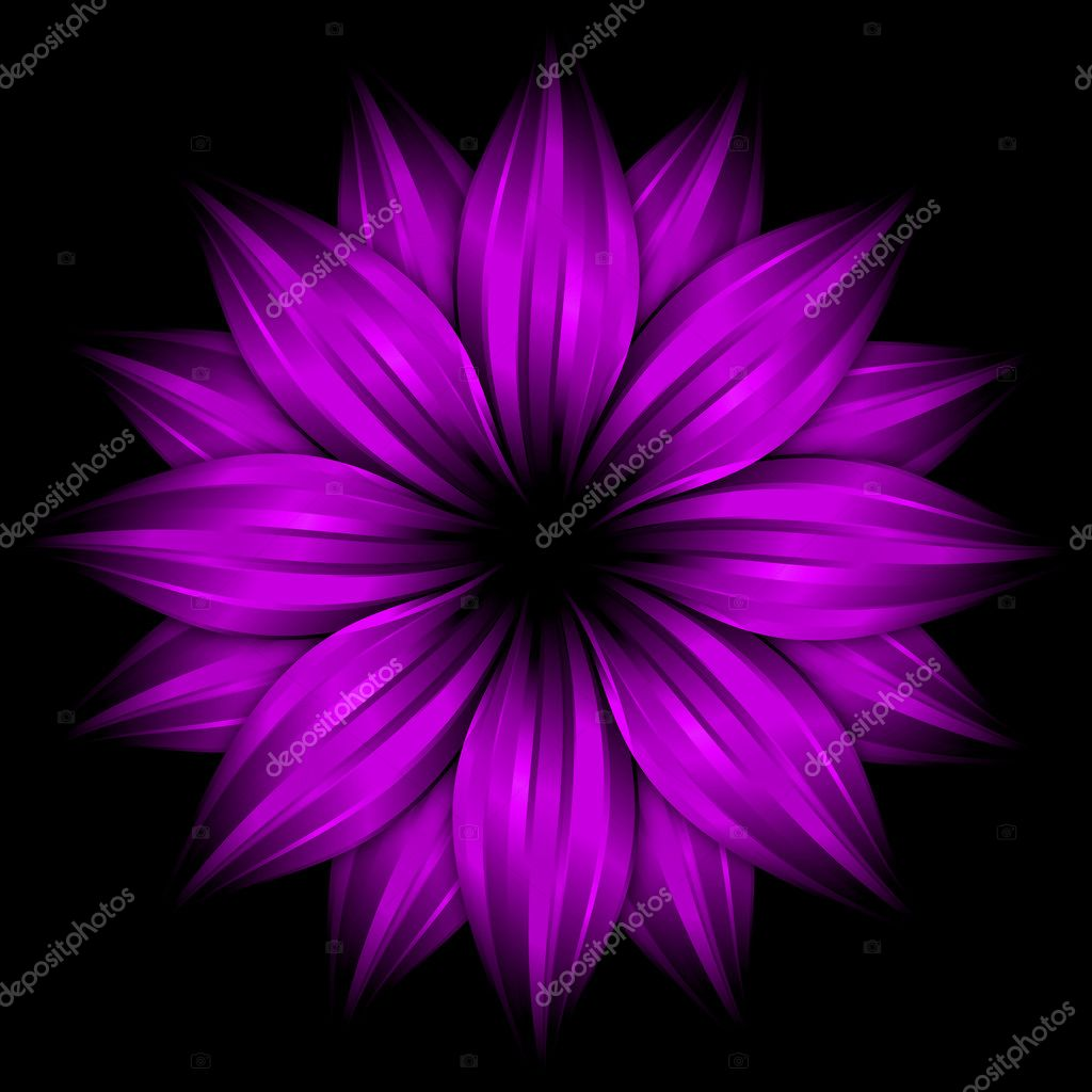 Abstract purple flower on black