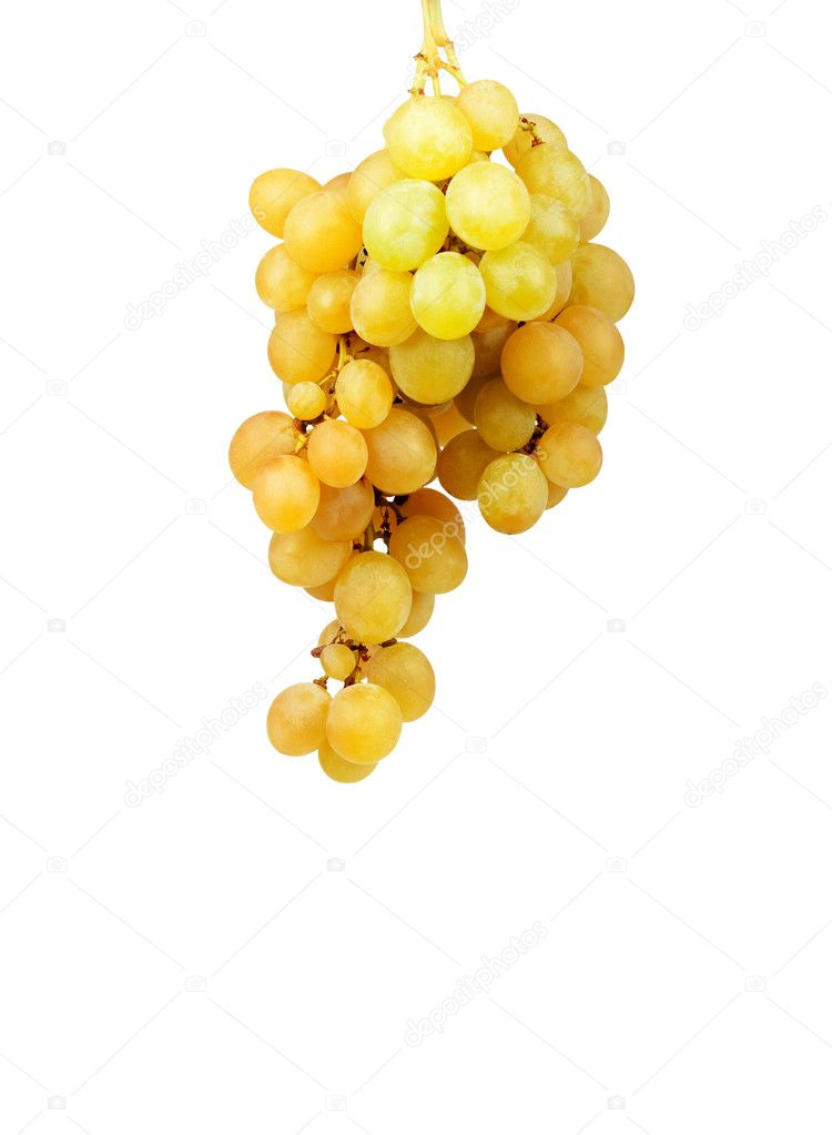 Bunch of fresh grapes