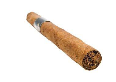 Cigar macro isolated