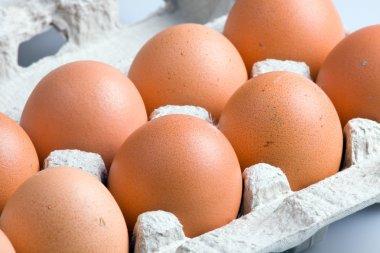 An open carton egg box with eggs stock vector