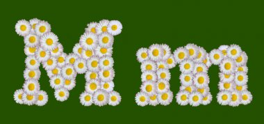 Alphabetical letter made of flowers