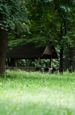 Wooden gazebo park