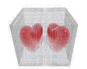 Fotografie 3D Herzen in Vogelkäfig isoliert auf weiss
