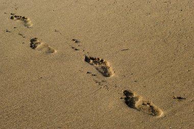 Footprints on the Sea beach sand