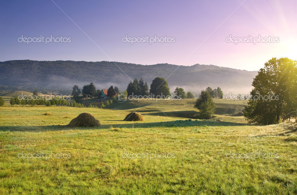 Early morning rural landscape