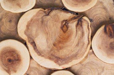 Wooden cut texture 2