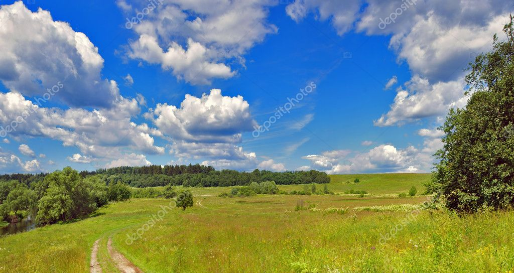 Summer panorama landscape