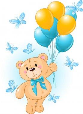 Boy Teddy