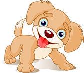 Hravé štěně