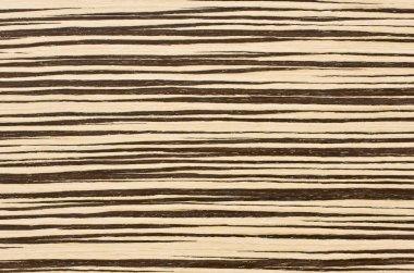 Zebra wood texture background