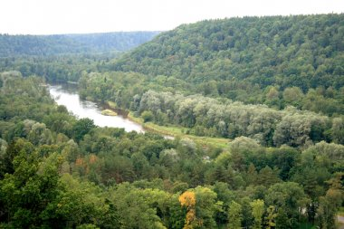Forests and river Gauja