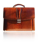 Suitcase from crocodile skin