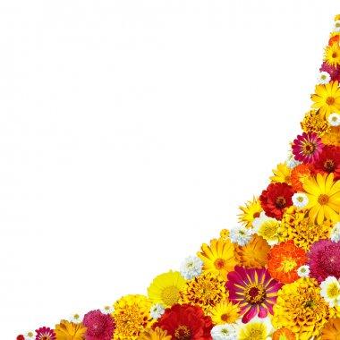 Flower framework for photo isolated stock vector