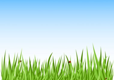 Grass green background