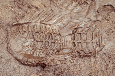 Boot print in brown mud