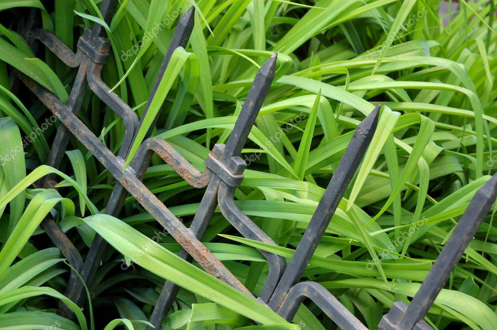 Black metallic protection in a green gra
