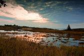Fotografia Lago dautunno al mattino