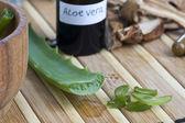 Fotografie Aloe vera