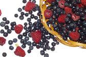 Fotografie borůvky a maliny, letní ovoce