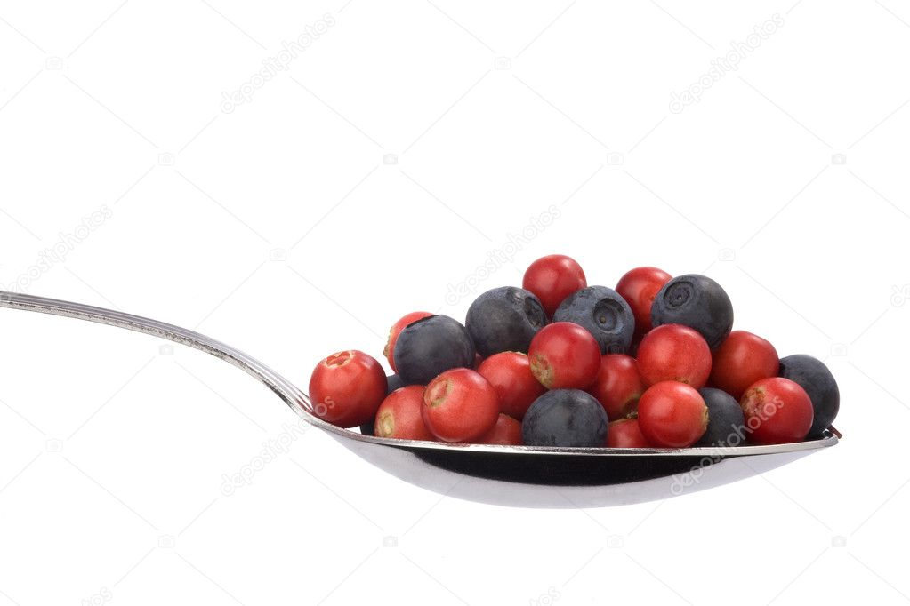 Full spoon of blueberries and cranberri