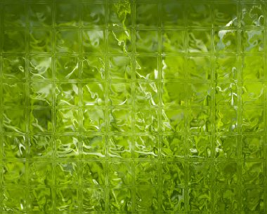 Abstract green glass texture