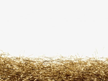 Gold tinsel frame