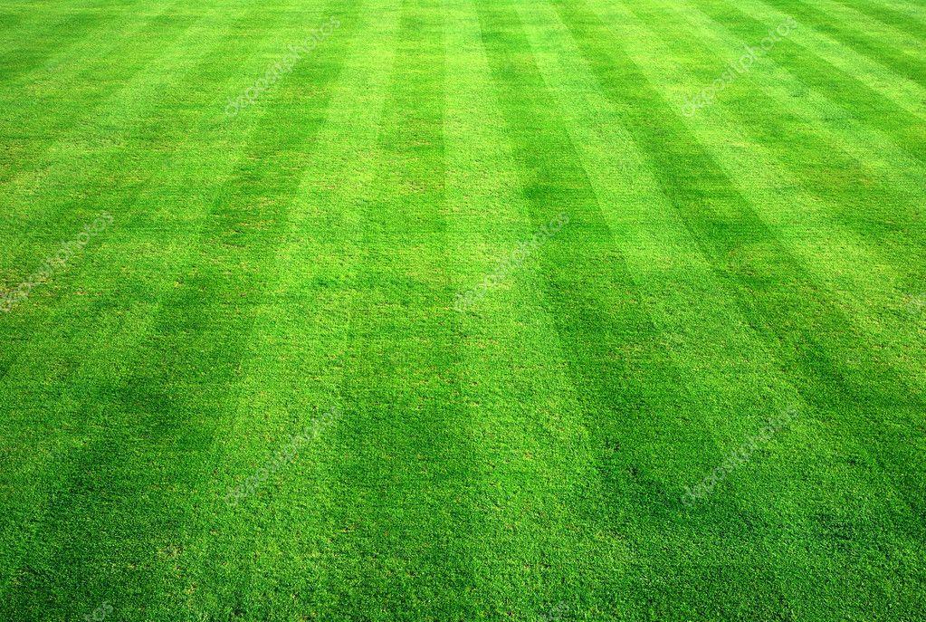 green grass background - HD1725×1159