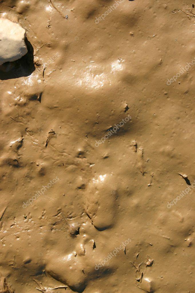 Wet mud close up.