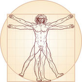 Photo The Vitruvian man