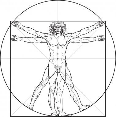The Vitruvian man