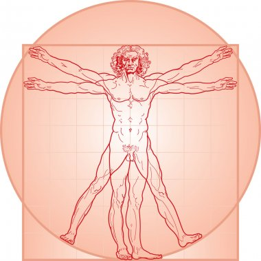 The Vitruvian man. Red version.