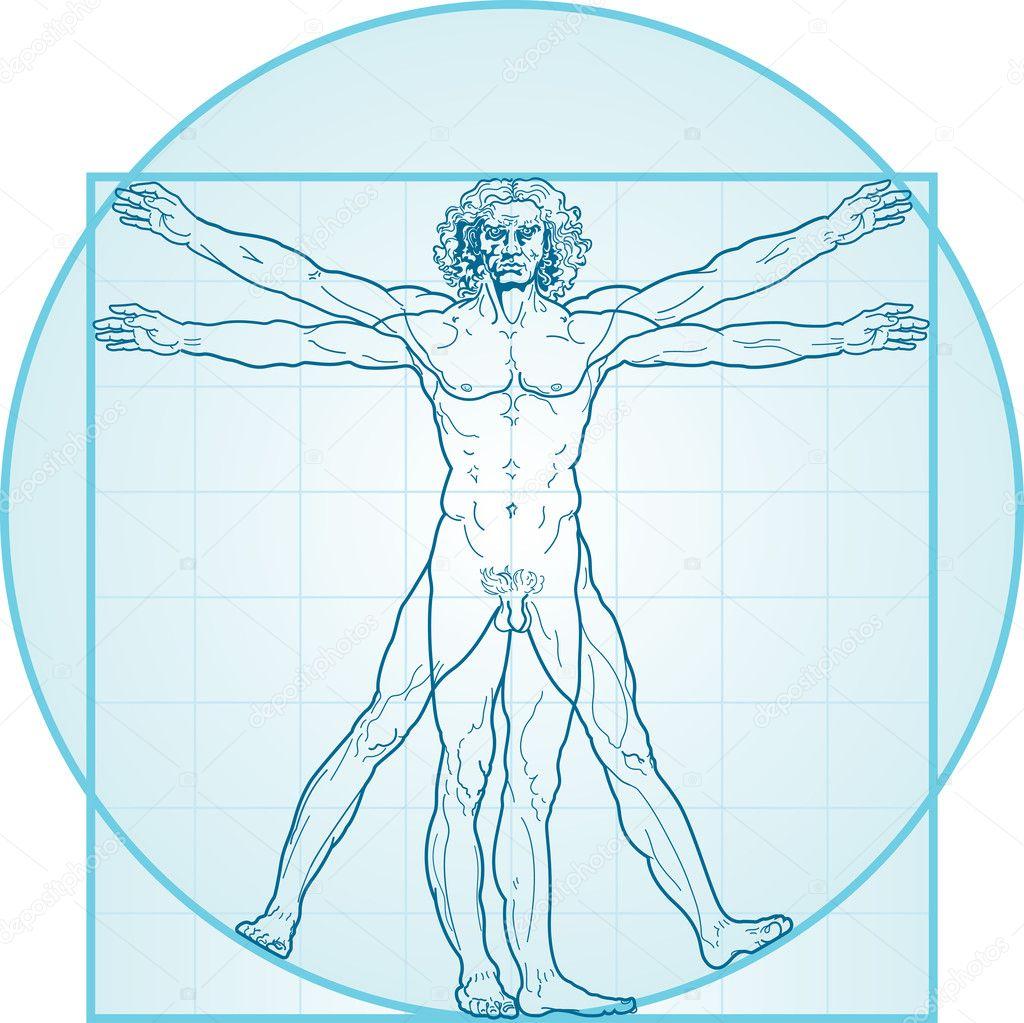 The Vitruvian man — Stock Vector © Photon #1544843