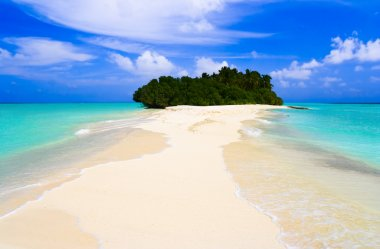 Tropical island and sand bank