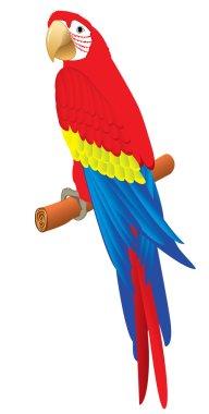 Parrot.Vector