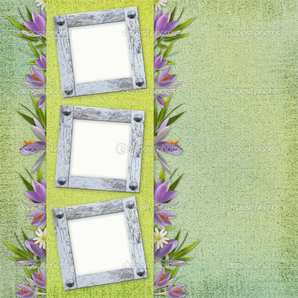 Spring background with frame