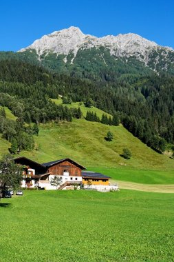 Alpine chalets, meadows and mountains