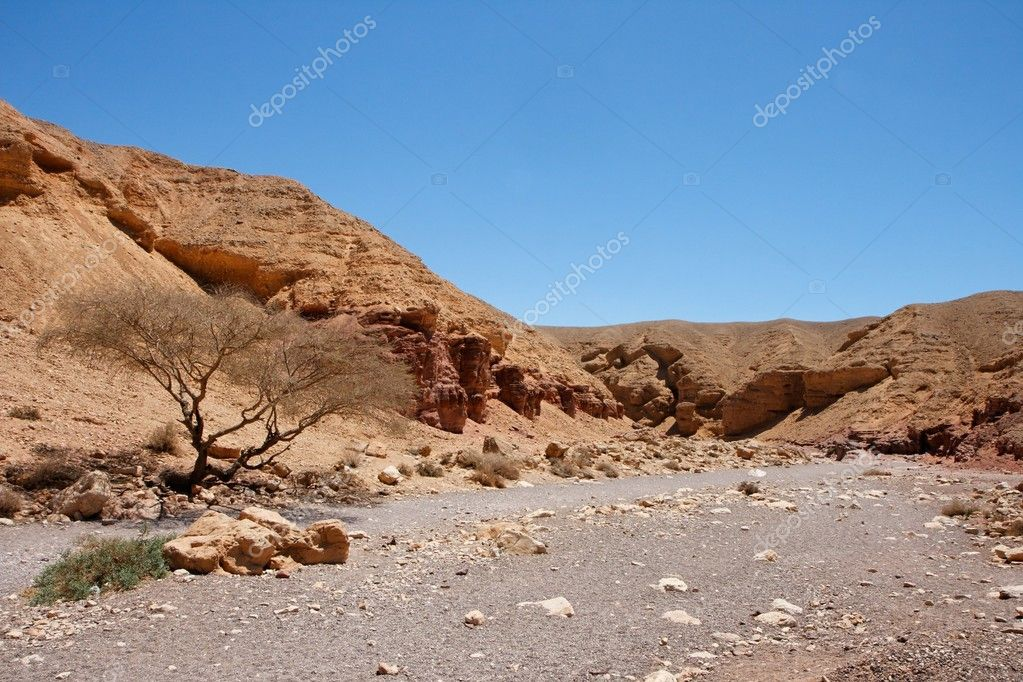 Desert landscape in Red Canyon in Israel