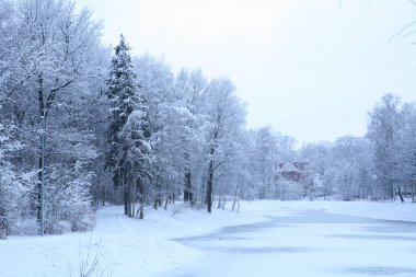 Blue winter landscape with house