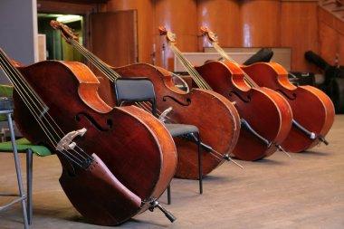Vintage double-bass