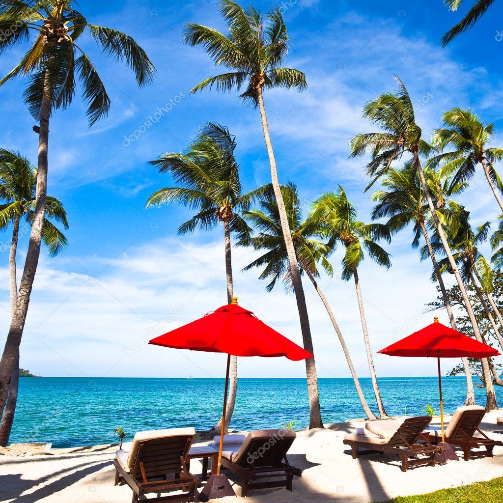 Sombrillas rojas y sillas en la arena de la playa me for Arena de playa precio