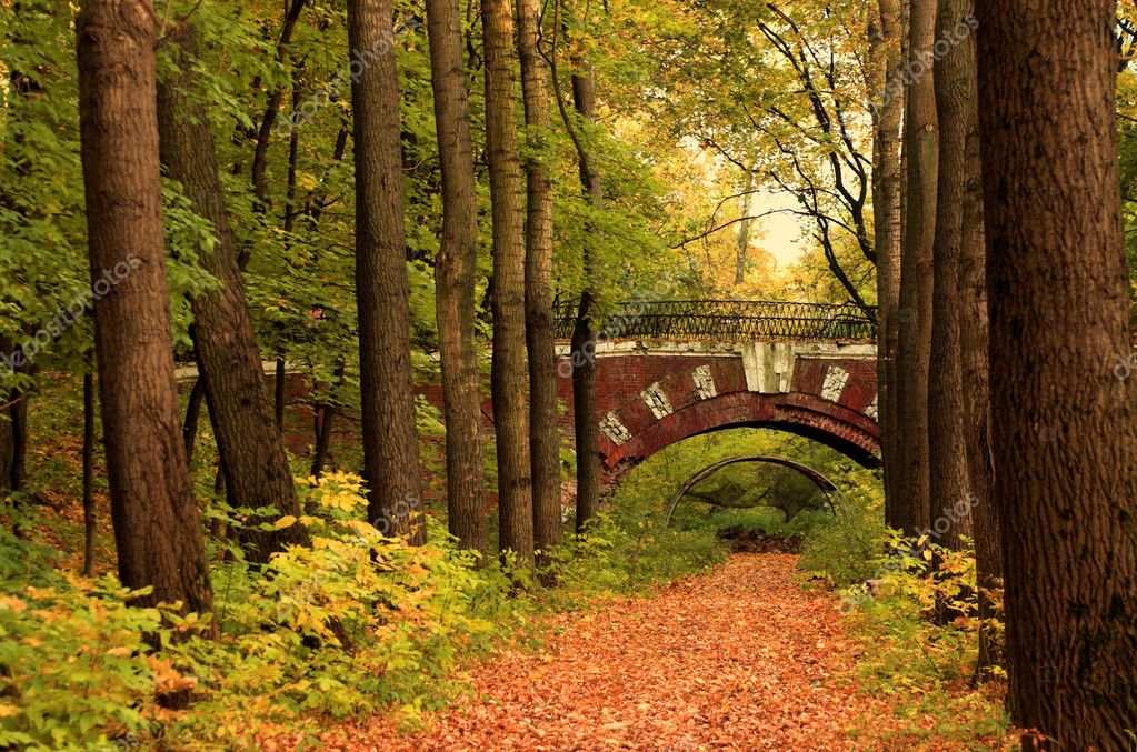 Brick bridge in the autumn forest