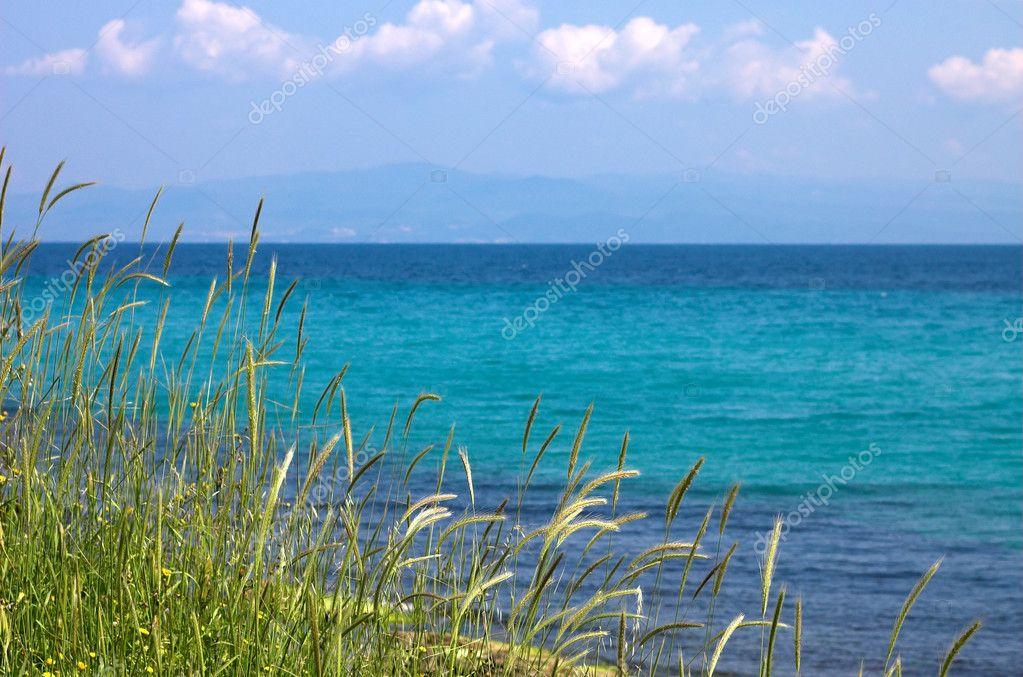 Grass, sea ans blue sky