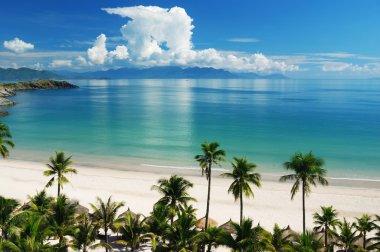Beach Scene, Tropics, Pacific ocean stock vector